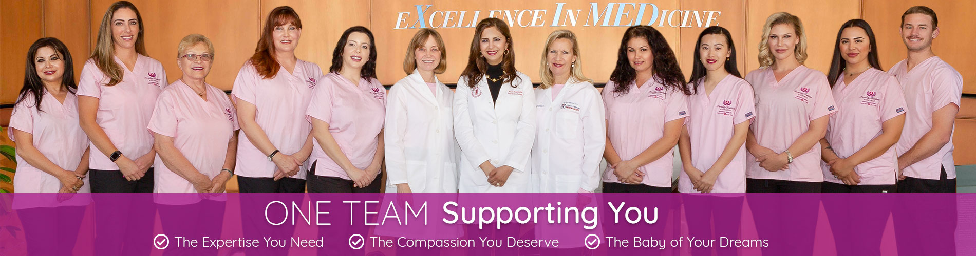 One Team Supporting You - The Expertise You Need, The Compassion You Deserve, The Baby of Your Dreams